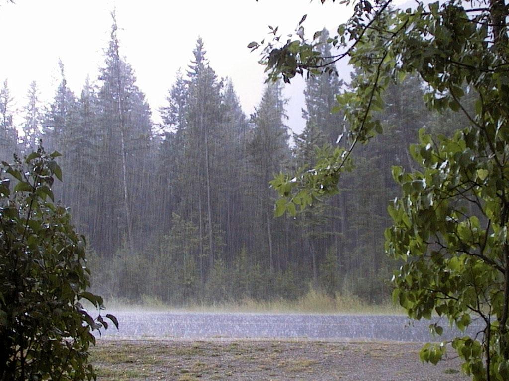 کاهش بارندگی