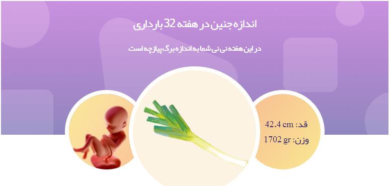 وضعیت جنین در هفته 32 بارداری1