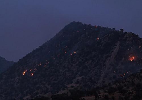 آتش سوزی در جنگل های پلدختر