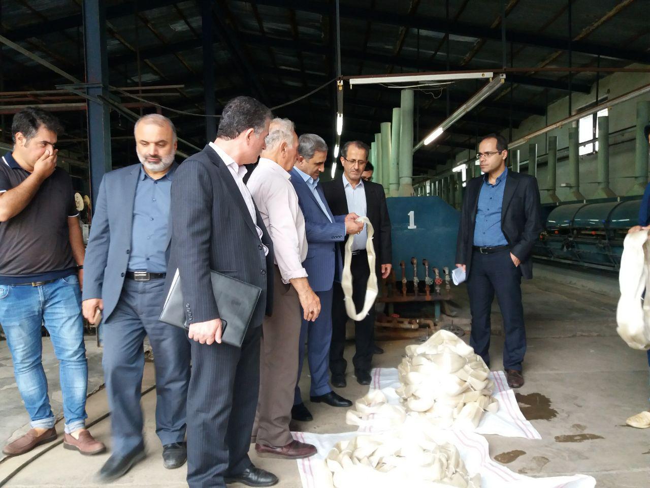 احیای صنعت ابریشم در گیلان