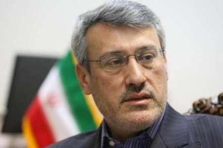 حمید بعیدی نژاد سفیر جمهوری اسلامی ایران