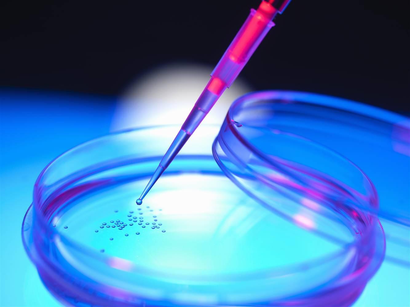 سلول های بنیادی و نیازهای بهداشتی مردم گیلان