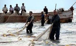 آغاز صید ماهی استخوانی از دریای خزر