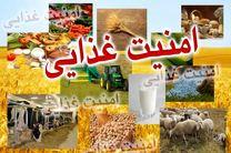 امنیت غذایی، دسترسی همه مردم به غذای کافی برای داشتن جسم سالم است