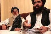 طالبان به دنبال صلح است