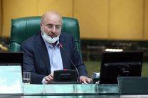 مجلس صرفا وضعیت نابسامان پیش از ثبت نام در انتخابات را ساماندهی می کند