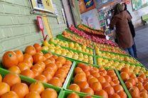 994 تن پرتقال آماده عرضه به بازار شب عید زنجان است