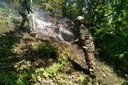 وقوع 11 فقره آتش سوزی در مناطق تحت مدیریت محیط زیست مازندران