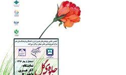 برپایی نمایشگاه «جلوه گل» در گالری جهان