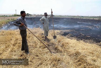 درآمدهای+داغ+-+کشاورزی (1)