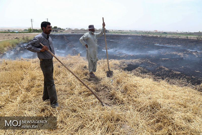 خسارت 15 هزار میلیارد تومانی سیل به کشاورزان
