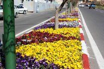 تولید ۸۹ هزار گل و گیاه در منطقه 3