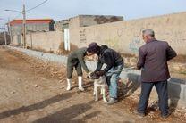 واکسیناسیون ۱۲۰۰ قلاده سگ علیه بیماری هاری در لرستان
