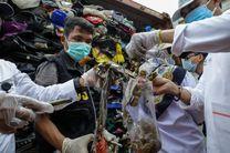 اندونزی، 210 تن زباله را به استرالیا بازمی گرداند