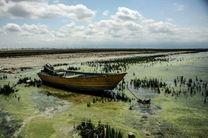 مشکل خلیج گرگان یک مسله فرا استانی و ملی است