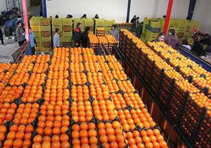 تعداد مراکز عرضه میوه تا 20 اسفند مشخص می شود