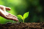 اتیوپی 200 میلیون درخت در یک روز کاشت