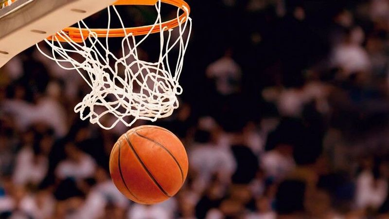 شبنم کلاهی به عنوان دبیر فدراسیون بسکتبال منصوب شد
