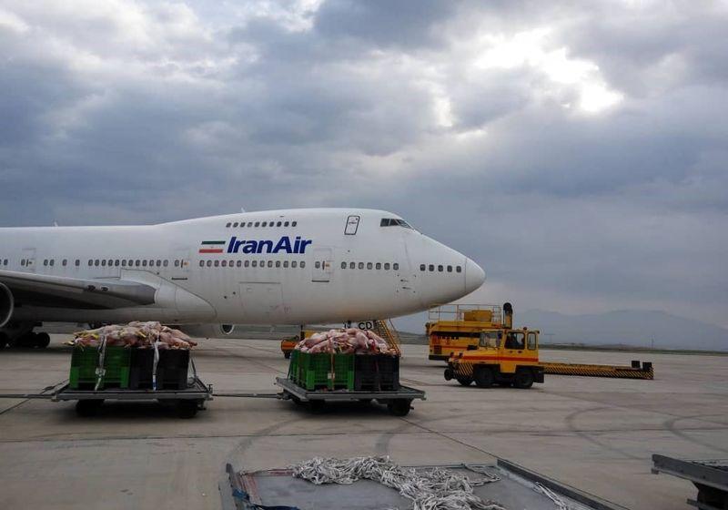 92 تن گوشت گرم از قزاقستان وارد کشور شد
