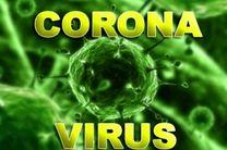 ابتلای 2 نفر به ویروس کرونا در اصفهان تایید شد