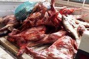 معدوم کردن 100 کیلوگرم گوشت فاسد در شهرستان برخوار