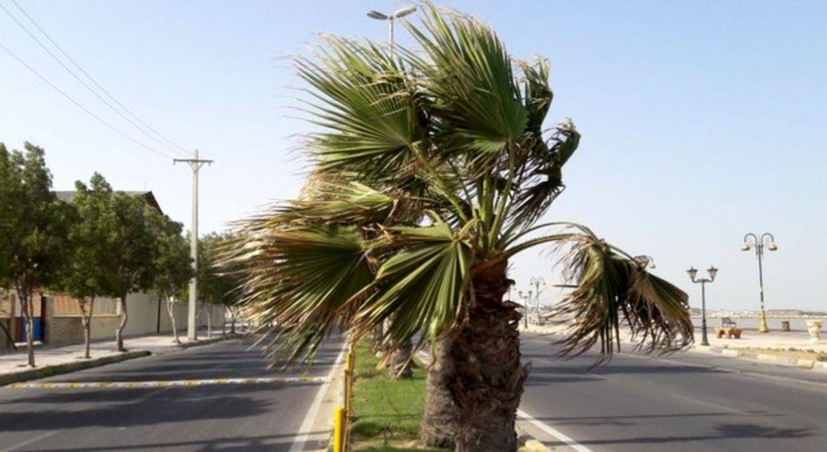 وزش باد و گرد و غبار در نقاط مرکزی و شرقی هرمزگان/خلیج فارس مواج است