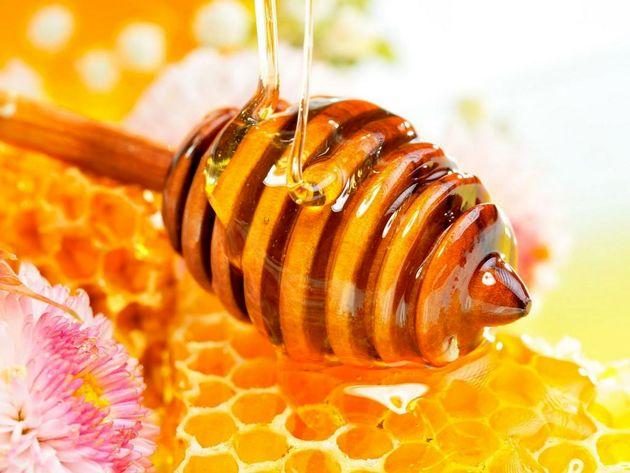رتبه ٤٣ ایران در تولید محصولات ارگانیک در جهان/کمتر از ٥درصد عسل ارگانیک تولید مى شود