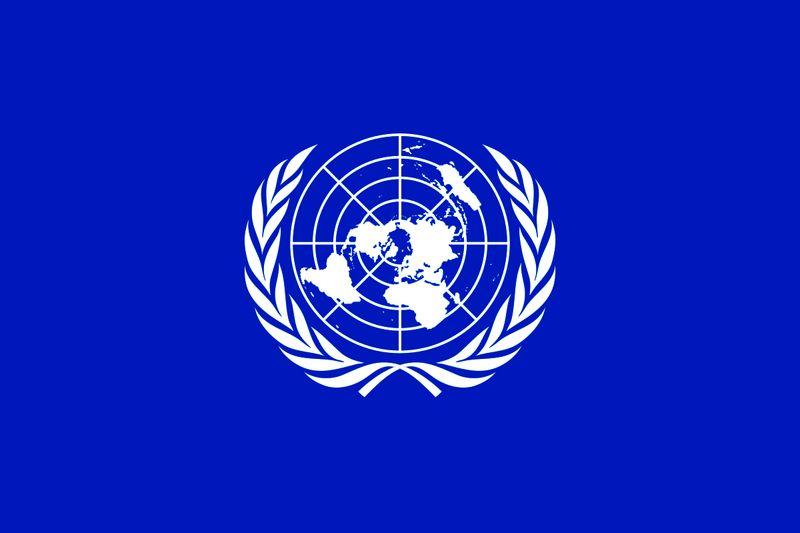 درخواست اعضای شورای امنیت از طرف های درگیر در یمن