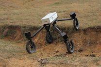 رباتی که از چوپانان هم بهتر گاوچرانی میکند