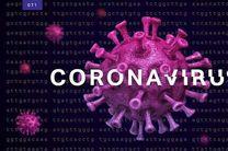 کشف بیش از 1800 بطری داروی غیرمجاز درمان کرونا در برخوار