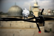 روز قدس روز تجلی حضور باشکوه امت پیامبر اعظم(ص) است