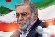تقدیر از خانواده شهید فخری زاده در جلسه علنی مجلس