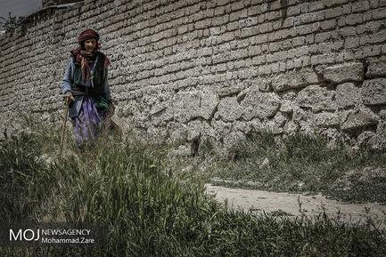 روستای جل اکبر ساوه