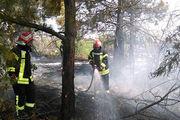 ۵۹ عملیات اطفای آتش سوزی علفزارها و جنگل توسط آتش نشانان شهر رشت
