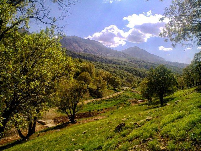 استان کردستان دارای 619 زیر حوزه آبخیز است