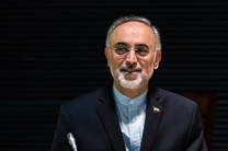 ایران از تبادل تجارب علمی و تحقیقاتی تهران - صوفیه استقبال می کند