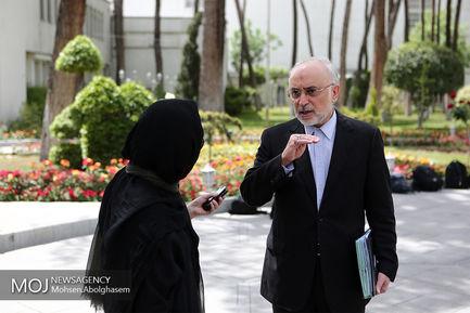 حاشیه جلسه هیات دولت -  ۱۸ اردیبهشت ۱۳۹۸/علی اکبر صالحی رییس سازمان انرژی اتمی