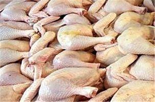 قیمت مرغ به ۸۳۵۰ تومان رسید