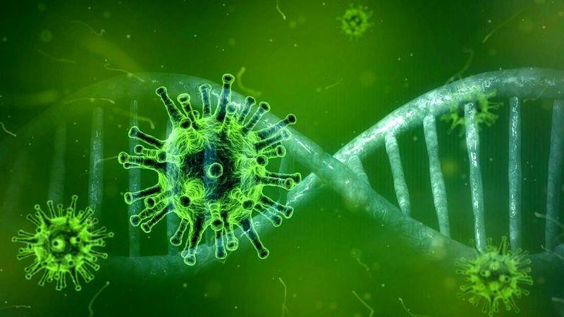 بیماری کرونا از بیماریهای آنفلوآنزا مرگ و میر کمتری دارد