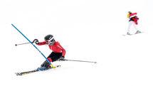نایب رئیس بانوان و عضو هیات رئیسه فدراسیون اسکی منصوب شدند