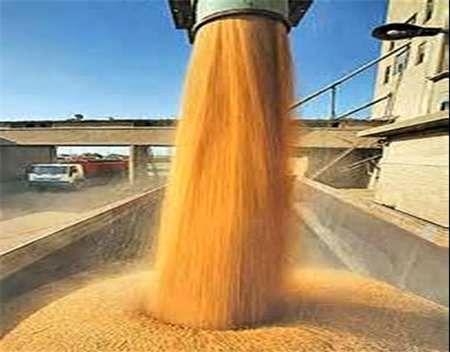 افتتاح 5 سیلوی ذخیرهسازی گندم در کرمانشاه