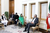 دیدار رئیس مجلس پاکستان با قائم مقام وزیر امور خارجه کشورمان
