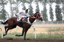 برگزاری هفته چهارم مسابقات اسبدوانی کورس پاییزه در گنبدکاووس