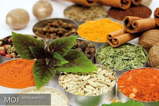 راهاندازی ۲۰ سلامتکده طب سنتی با معماری ایرانی - اسلامی؛ بزودی