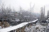 سقوط بهمن در کشمیر جان 1 نفر را گرفت