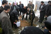 قالیباف و لاریجانی در مراسم روز درختکاری+عکس