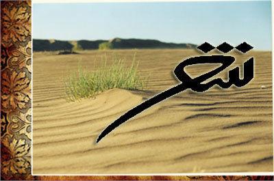 هشتمین کنگره سراسری شعر کویر در ابرکوه برگزار میشود