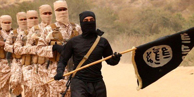 استقبال گروه تروریستی داعش از آتشسوزی کلیسای نوتردام