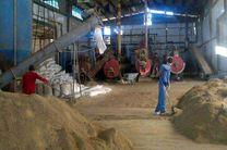 تولید سالانه دو هزار تن پودر ماهی در میناب