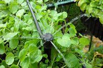 توصیههای 3روزه هواشناسی کشاورزی